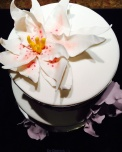 Juliette cake design fleur